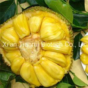 Jackfruit Powder / Jackfruit Juice Powder /Jackfruit Extract Powder pictures & photos
