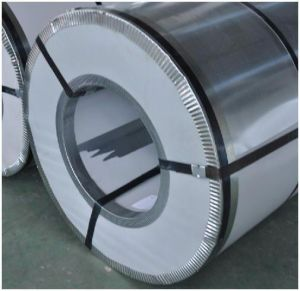 Color Coated (pre-painted) Galvanized Steel Coil pictures & photos