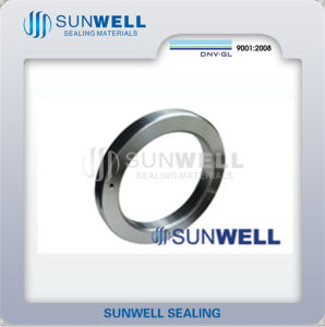 Bx Ring Joint Gaskets Used with 6bx Flanges pictures & photos