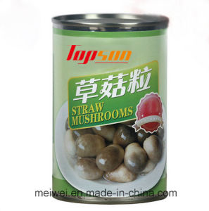 Top Quality Canned Whole Straw Mushrooms pictures & photos