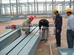 Steel Building Frame Installation for Construction Site pictures & photos