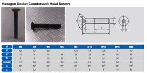 Hexagon Socket Countersunk Head Screws pictures & photos