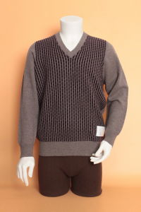 Yak Wool/Cashmere V Neck Pullover Long Sleeve Sweater/Garment/Clothing/Knitwear pictures & photos