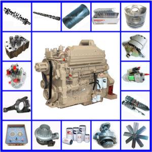 Nta855 Kta19 Kta38 Kta50 M11 Vta28 N14 Enine Parts pictures & photos