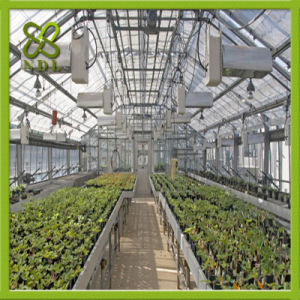 High Quality Polycarbonate Sheet Greenhouse with Anti-Fog pictures & photos
