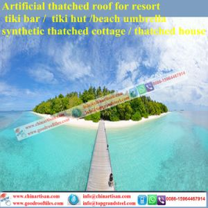 Natural Look Palmex Thatch Bar/Tiki Hut Synthetic Thatched Cottage Water Bungalow Beach Umbrella pictures & photos