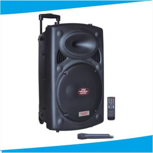 10inch Outdoor Speaker with Handle Wheels F607s pictures & photos