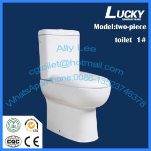 Ceramic Two-Piece Washdown Wc Toilet Jx-1# pictures & photos