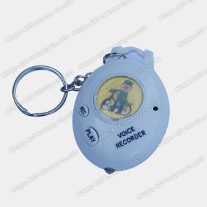 Voice Keychain, Photo Voice Recorder, Digital Keychain pictures & photos