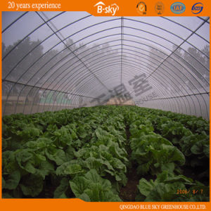 Plastic Film Covered Arch Greenhouse pictures & photos