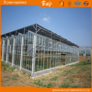 Long Life Span High Quality Glass Greenhouse pictures & photos