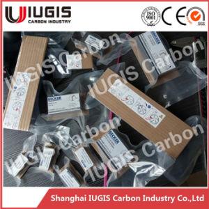 Wn 124-090 Vacuum Pump Motor Parts Carbon Vane 90131600008 pictures & photos