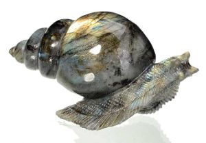 Natural Labradorite Carved Snail Sculpture Home Decoration #Aj12