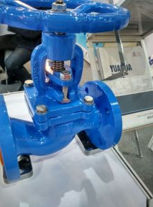 DIN PN16 Cast Iron Globe Valve pictures & photos