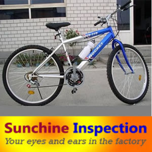 Electric Motorcycle/Sports and Entertainment Equipment Inspection Services in China pictures & photos