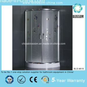 Popular Economic Model Bathroom Shower Enclosure (BLS-9615) pictures & photos