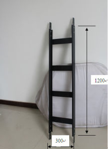 Cable Routing Ladder for Server/Network Rack/Cabinet pictures & photos