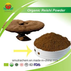 Manufacturer Supplier Organic Reishi Powder pictures & photos