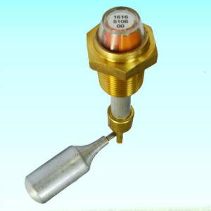 Atlas Oil Level Indicator 1616510800 Oil Gauge Air Compressor Part pictures & photos