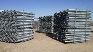 Steel Fence and Trellis Used Ground Screw pictures & photos