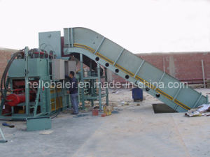 Waste Paper and Cardboard Baler Equipment with Conveyor pictures & photos