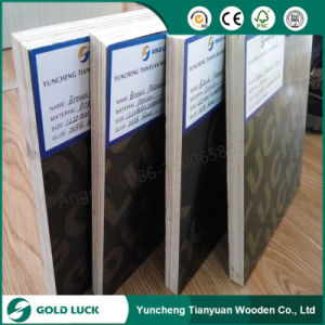 18mm Concrete Phenolic Film Faced Plywood pictures & photos