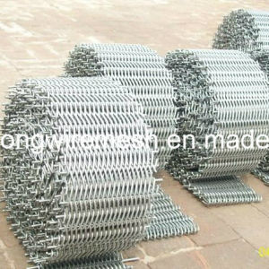 Compound Balanced Belt/Conveyor Belt Mesh pictures & photos