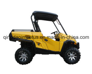 1100cc Automatic Transmission UTV with 2 Seats pictures & photos