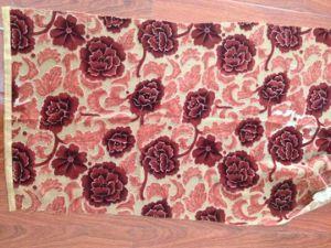 Burnout Printed Woven Fabric/Textile (RTBP003) pictures & photos
