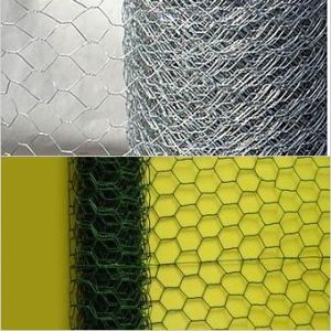 PVC Coated Hexagonal Wire Mes in Different Color pictures & photos