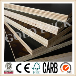 Qingdao Gold Luck Film Faced Plywood Concrete Blinding pictures & photos