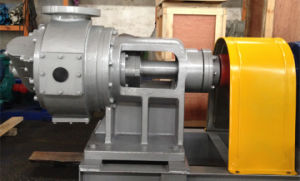 Nyp320 High Viscosity Internal Gear Oil Pump pictures & photos
