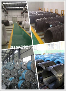 Steel Wire, Spring Steel Wire, Oil Temper Wire pictures & photos