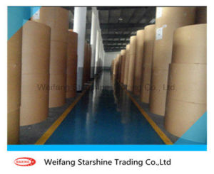 White Woodfree Offset Paper for Printing & Packaging pictures & photos