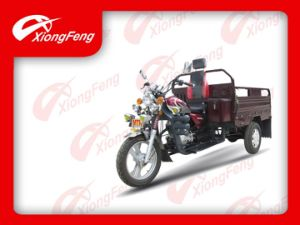 Luxury Cargo Tricycle/Professional 3-Wheel Gasoline Cargo Tricycle/Three Wheel Trike (XF150ZH-15) pictures & photos