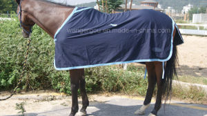 100% Cotton, Summer Sheet, Horse Rug (RG-04) pictures & photos
