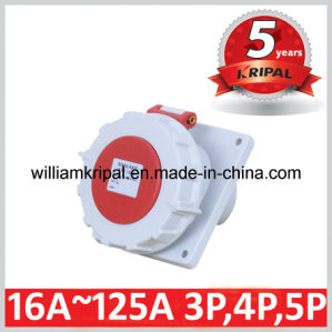 IP67 32A 3p+E Industrial Panel Mount Power Socket pictures & photos