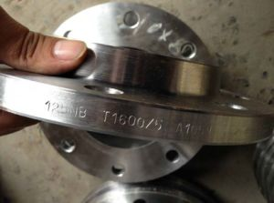 SABS 1123 (SANS 1123) T600/1000/1600/2500/4000 Forged Steel Flanges pictures & photos