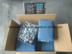 Galvanized Best Quality Zinc with Roofing Nails and Common Nails pictures & photos