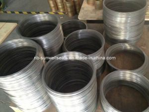 Stainless Steel Ring of Spiral Wound Gasket pictures & photos