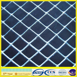 Expanded Metal Mesh for Fencing (XA-EM002) pictures & photos