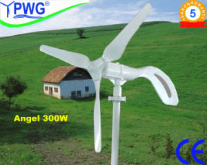 Low Rpm Powerful Farm Use 5kw Wind Turbine System pictures & photos