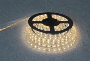 12V Warm / Cool White LED Tape 60 Per Metre