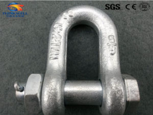 Forged Galvanized Us G2150 Bolt Type Dee Shackle pictures & photos