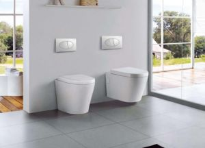 Deluxe Washdown Wall Hung Toilet (DS1032) pictures & photos
