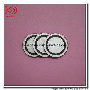 Pzt Piezo Ceramics Rings Plates Disc pictures & photos