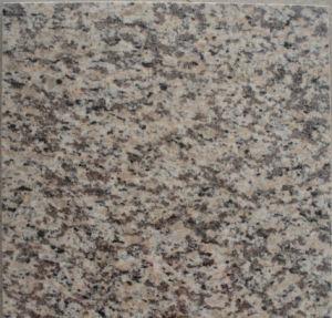 Tiger Skin Red Granite slab and tile