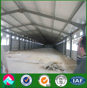 Construction Design Steel Structure Poultry Shed pictures & photos