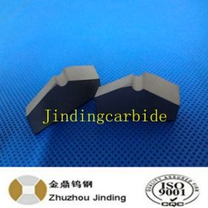 Mining Coal Carbide Tip pictures & photos