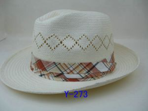 Panama Hat pictures & photos